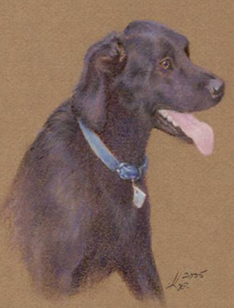 """Black Lab"" by Lois Koel (Art)"